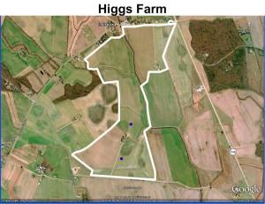 HiggsFarmProperty